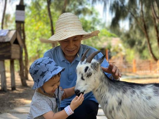 Ghé FLC Zoo Safari xem hổ săn mồi, chơi cùng voi và chuột túi Wallaby - Ảnh 5.