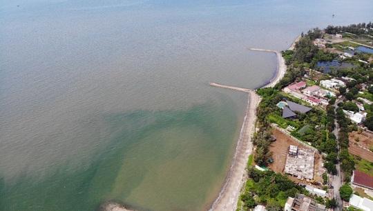 MAB Việt Nam nói về dự án khu đô thị du lịch lấn biển Cần Giờ - Ảnh 2.