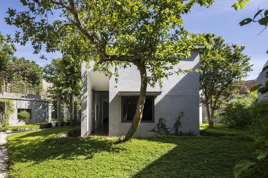 Ngôi nhà trên thảm hoa vàng cỏ xanh - Ảnh 1.