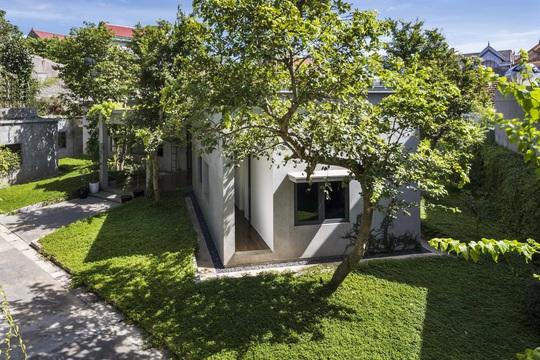 Ngôi nhà trên thảm hoa vàng cỏ xanh - Ảnh 2.