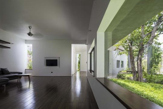 Ngôi nhà trên thảm hoa vàng cỏ xanh - Ảnh 3.