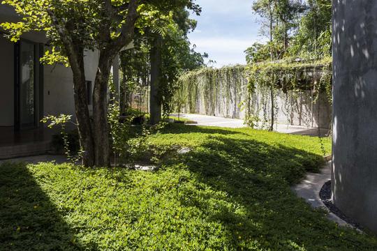 Ngôi nhà trên thảm hoa vàng cỏ xanh - Ảnh 8.