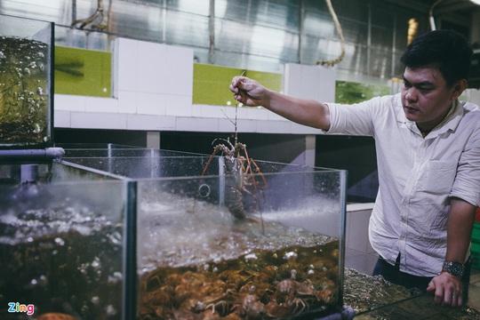 Chợ Hàng Dương và những thiên đường hải sản tươi ngon ở TP HCM - Ảnh 11.