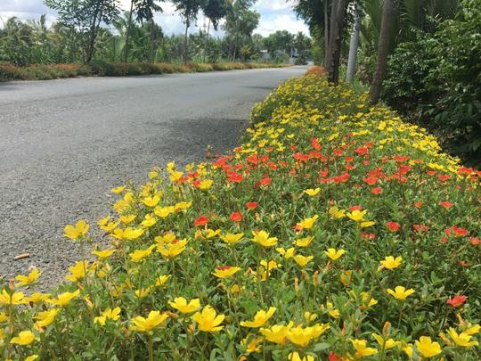 Chống xả rác, nhiều đường hoa đẹp xuất hiện ở Bình Chánh - Ảnh 1.