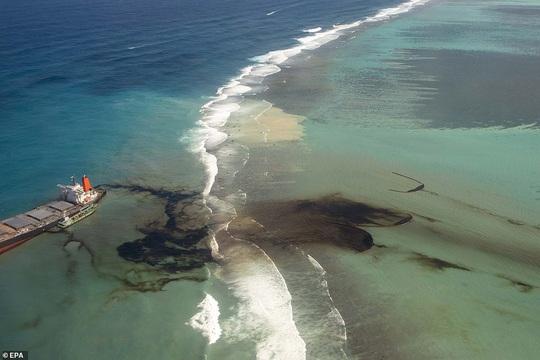 Tàu dầu mắc cạn bị xẻ làm đôi, thiên đường Mauritis than khóc - Ảnh 3.