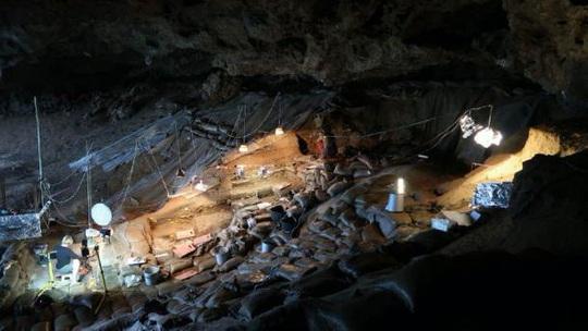 Phát hiện chốn chăn gối xưa nhất thế giới, đầy sinh vật tuyệt chủng bao vây - Ảnh 1.