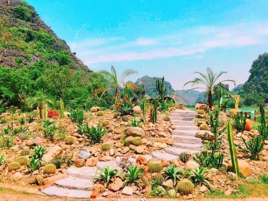 Vườn xương rồng, thác nước tuyệt đẹp dưới chân Hang Múa hút giới trẻ - Ảnh 5.