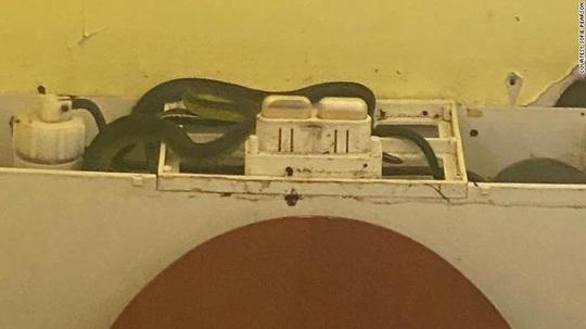 Bồn cầu tắc, mở ra thấy 4 con rắn nằm bên trong - Ảnh 1.