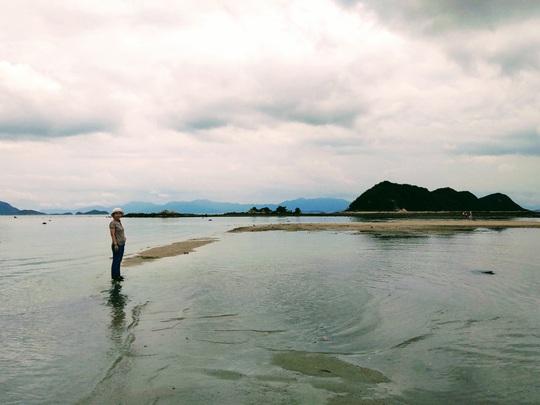Con đường giữa biển thần kỳ ở Điệp Sơn - Ảnh 8.