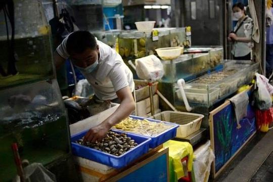 Trung Quốc cấm hải sản dính virus SARS-CoV-2 từ Indonesia - Ảnh 1.