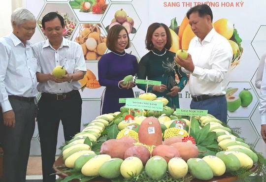 An Giang lấy nông nghiệp làm nền tảng phát triển kinh tế - Ảnh 2.