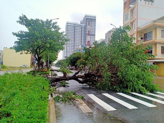 Chùm ảnh trước bão: Đà Nẵng mưa xối xả ngập đường, sấm sét vang trời - Ảnh 5.