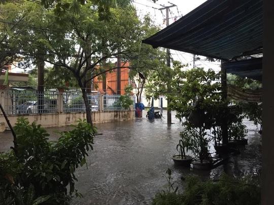 Chùm ảnh trước bão: Đà Nẵng mưa xối xả ngập đường, sấm sét vang trời - Ảnh 16.