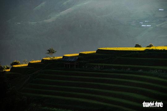 Đuổi theo mặt trời ngắm ruộng bậc thang đẹp như tranh vẽ - Ảnh 3.