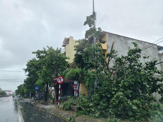 Bão số 5 ở Quảng Bình: Cây đổ ngổn ngang, người phụ nữ ngã xuống đường nhập viện - Ảnh 2.