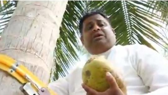 Bộ trưởng Sri Lanka leo cây để phát biểu về tình trạng khan hiếm dừa - Ảnh 1.