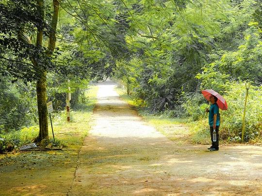 Đi chơi Vườn quốc gia Cát Bà trong ngày - Ảnh 1.