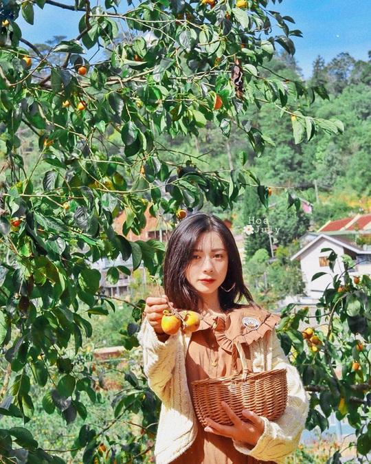 Check-in vườn hồng ở Đà Lạt - Ảnh 1.