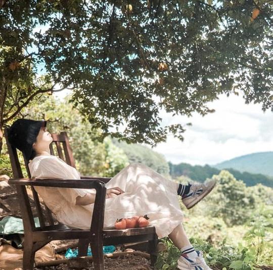Check-in vườn hồng ở Đà Lạt - Ảnh 6.