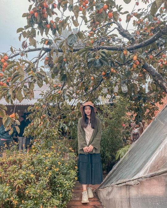 Check-in vườn hồng ở Đà Lạt - Ảnh 9.