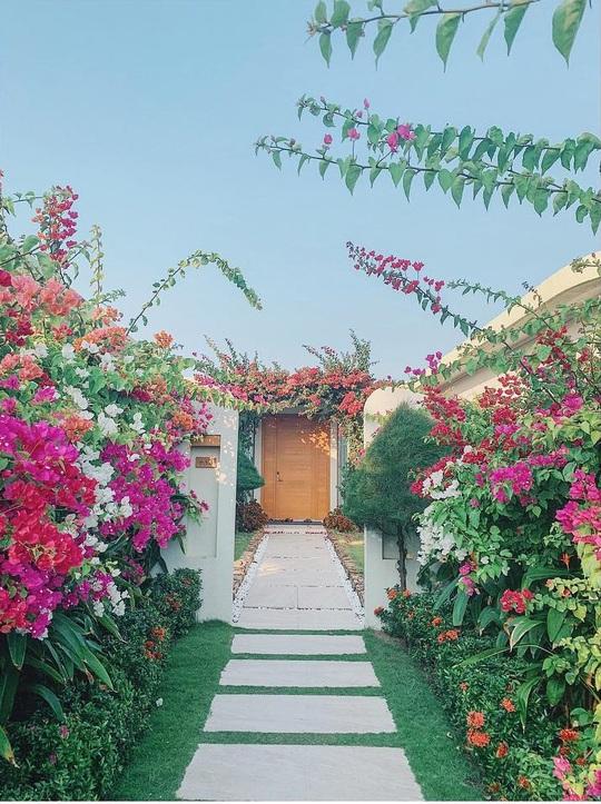 Phát hiện thiên đường sống ảo với background hoa cỏ lãng mạn nhất Quy Nhơn - Ảnh 9.