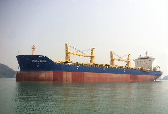 Ngân hàng rao bán tàu biển gần 200 tỉ đồng để thu hồi nợ - Ảnh 1.
