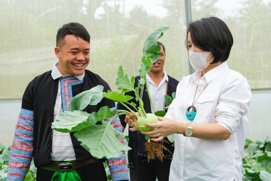 Nông dân Vân Hồ tăng gấp đôi thu nhập nhờ trồng rau sạch - Ảnh 1.