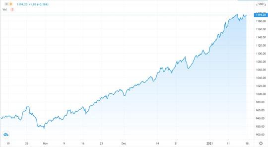Nhà đầu tư F0 đang chủ quan khi cứ mua cổ phiếu là thắng - Ảnh 2.