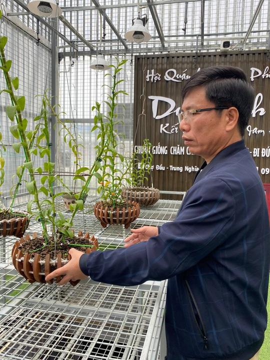 Chuyển hướng sang lan đột biến, Lê Thành Dư thành ông chủ vườn lan tiền tỉ - Ảnh 2.