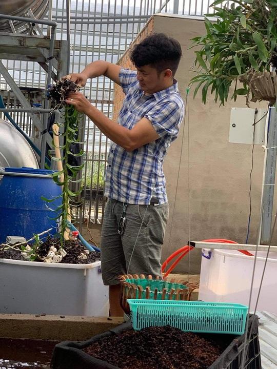 Ông chủ vườn lan Đàm Rồng Nghệ nói về lan đột biến tiền tỷ - Ảnh 3.