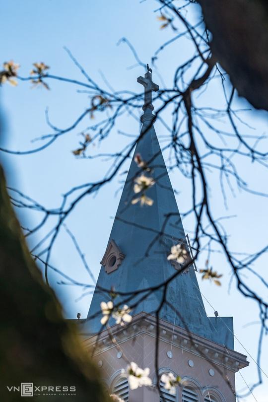 Mùa hoa ban trắng Đà Lạt - Ảnh 7.