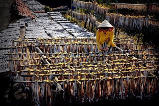 Làng chài vào mùa hội cá khô - Ảnh 1.