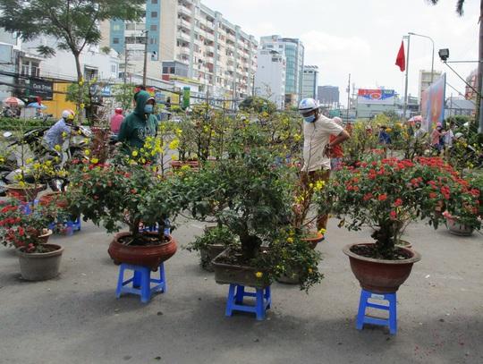 Hoa Tết còn ê hề, Sở Công Thương TP HCM kêu gọi dân giải cứu - Ảnh 7.