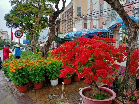 Cần Thơ bàn giải pháp hỗ trợ người bán hoa kiểng - Ảnh 1.