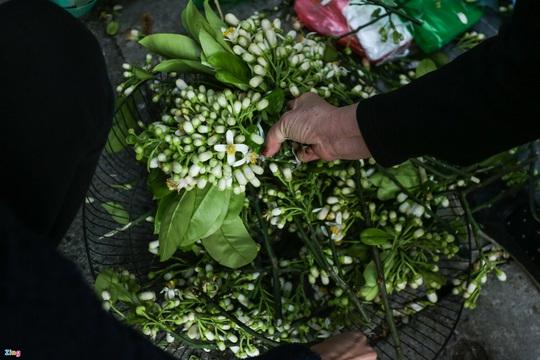 Người Hà Nội chen nhau mua gà ngậm hoa hồng cúng giao thừa - Ảnh 12.