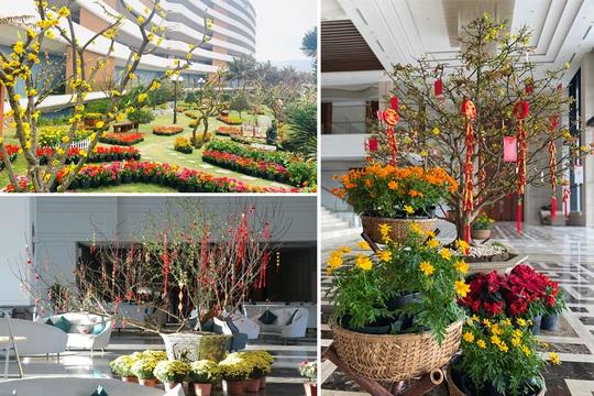 Đón Tết cổ truyền tại khách sạn 5 sao: trải nghiệm đặc biệt thu hút hàng vạn du khách - Ảnh 9.