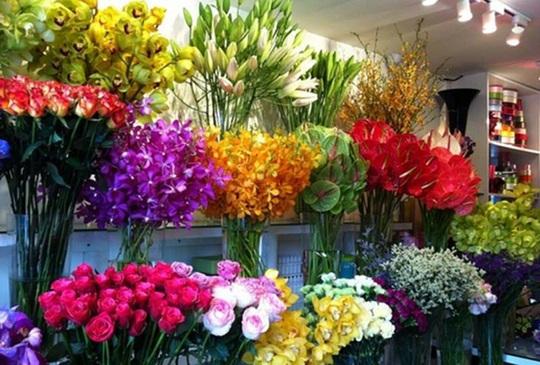 Học bí kíp giữ hoa tươi lâu trong ngày Tết - Ảnh 1.