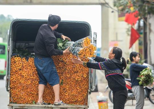 CLIP: Thị trường hoa Tết Tân Sửu 2021 ở Thủ đô đìu hiu vì dịch Covid-19 - Ảnh 10.