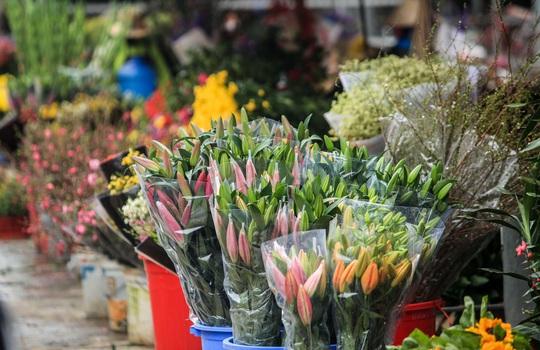 CLIP: Thị trường hoa Tết Tân Sửu 2021 ở Thủ đô đìu hiu vì dịch Covid-19 - Ảnh 15.