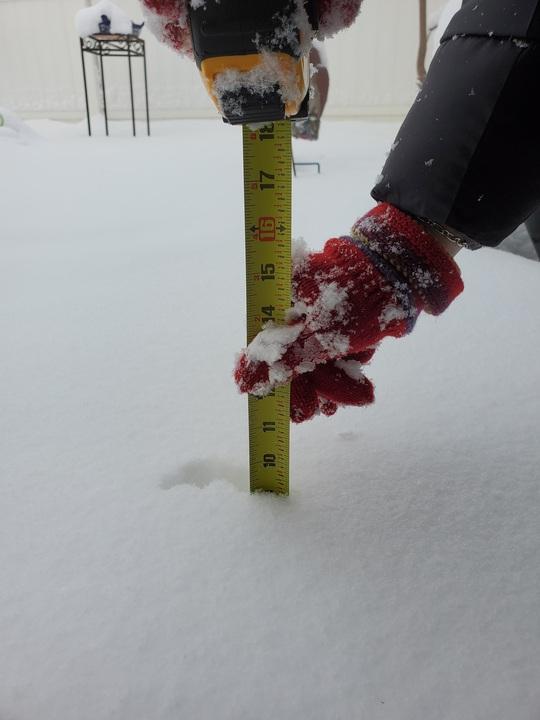 Lạnh không tưởng ở Texas: Những hình ảnh không thể quên! - Ảnh 21.