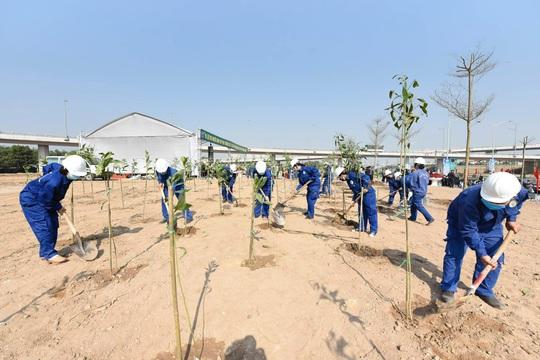 Hà Nội hướng đến mục tiêu trồng 1 tỉ cây xanh - Ảnh 3.