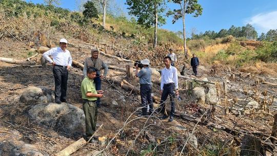 Lâm Đồng tái xuất tình trạng phá rừng phòng hộ, lấn chiếm đất - Ảnh 9.