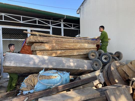 Lâm tặc hạ gỗ quý gần chốt bảo vệ rừng - Ảnh 1.
