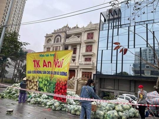 Thêm nhiều nghệ sĩ giải cứu nông sản Hải Dương - Ảnh 5.