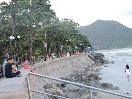 (Bài xuân online) Ngắm vẻ đẹp vượt thời gian của hàng cây di sản ở Côn Đảo - Ảnh 5.