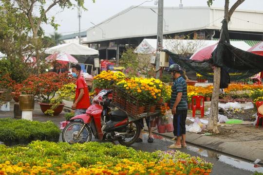 Hoa Tết còn ê hề, Sở Công Thương TP HCM kêu gọi dân giải cứu - Ảnh 1.