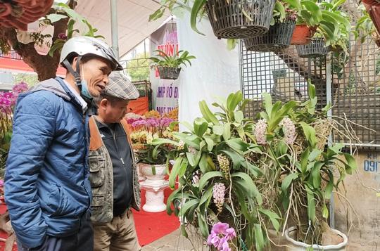 Những chậu hoa lan bằng gỗ lạ mắt ở chợ Tết - Ảnh 12.