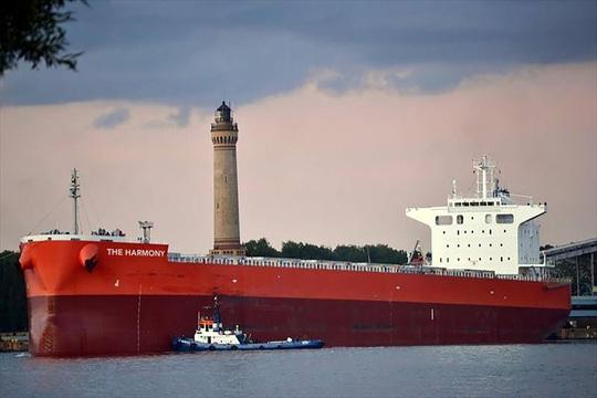 Giá cổ phiếu tăng kỷ lục, Hòa Phát tậu 2 chiếc tàu cỡ lớn để chở sắt thép - Ảnh 1.