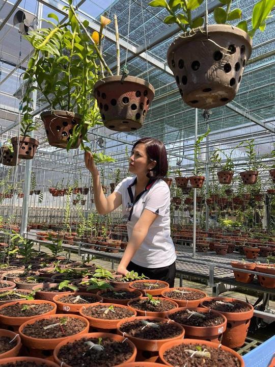 Nghệ nhân Thủy Royal: Đến với hoa lan từ những trải nghiệm trên thương trường - Ảnh 2.