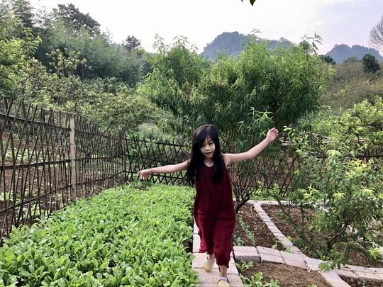 Xây nhà sống giữa vườn mận vì mắc kẹt ở Mộc Châu - Ảnh 8.